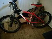 Raleigh max 24 bike