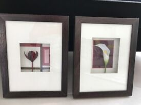Two pictures from Next featuring inlay flowers and mauve frames