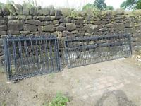 Gate and Fence Panels