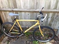 Raleigh Bicycle for Sell, £45 open to offers.