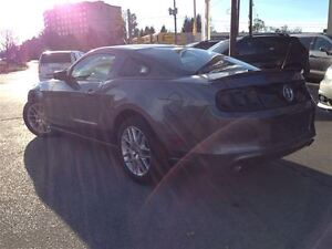 2014 Ford Mustang PONY EDITION|LEATHER| Oakville / Halton Region Toronto (GTA) image 8