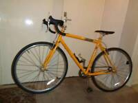 Genesis ( day_one ) single speed road bike