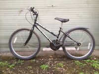 Boys and Girls Professional mountain bikes for sale