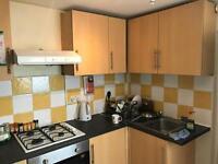 3 bedroom house in Rhymney Street, Cathays, Cardiff, CF24 4DF