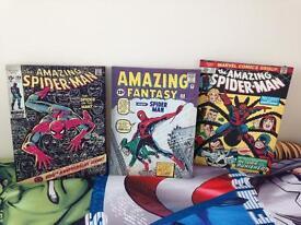 Amazing spider man canvas x3