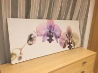 Orchid spectrum print
