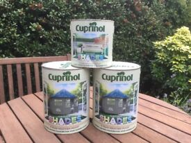 2 cans of 5 litre paint unopened