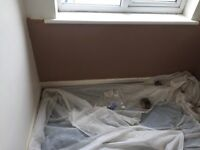 Plaster / labour wanted