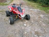 Road legal quad mot till March 2019