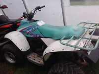 piece de trail boss 250