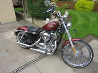 2013 Harley Davidson 1200cc 72 sportster limited edition immaculate condition.