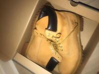Timberlands men size 11 boxed