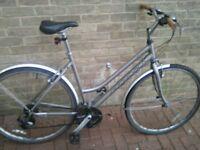 unisex road bike