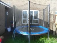 8ft wood worm trampoline good condition from Tesco under 1 year old with safety net