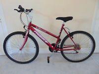 """Probike Classic"" (20"" frame) Mountain Bike"