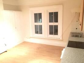 Large studio flat w/ ensuite and kitchen no fees