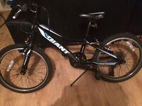 Boys 20 inch giant bike