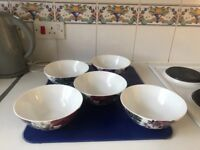 Brand new 5 bowls