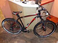 barracuda Draco 3 mountain bike