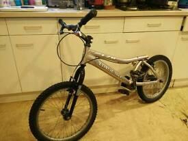 Base T20 Trials bike