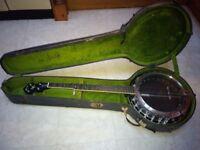 Alvarez Bluegrass 5 string banjo
