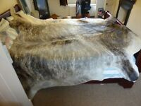 Unusual grey black white large cow skin rug