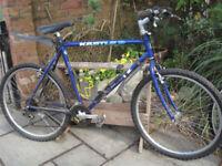 Raleigh mountain/road bike, 20 inch frame;
