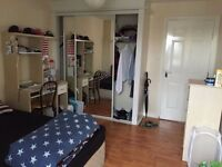 Spare room available in top floor penthouse apartment