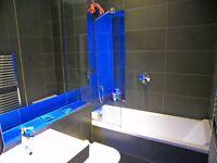 Modern 1 bedroom flat for rent £650.00