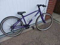 Purple Frog 69 Lightweight children's bike with 2 sets of tyres, tubes and spares
