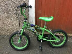 Ninja Turtles Bike