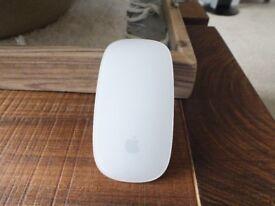 Apple Magic Mouse.