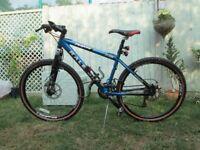 Raleigh M600 mountain bike.