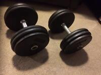 ProStyle 2x28.5kg dumbbells