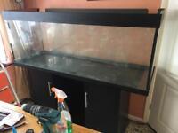 Aquarium 5 foot