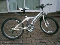 Boy's 'Wolf Probike' bicycle