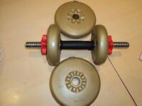York Barbell with 4 weights