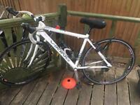Ladies Road Bike - Viking