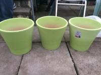 Terracotta green garden plant pots