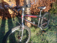ISLABIKES BEINN 20 LARGE Grey Red NEW PARTS Full service. POSTED FOR XMAS Age 6 +