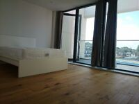 STUNNING ROOMS IN GREENWICH!!! NEWLY REFURBISHED APARTMENT!! MOVE IN ASAP