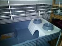 2 Tiered Rabbit/Guinea pig Cage