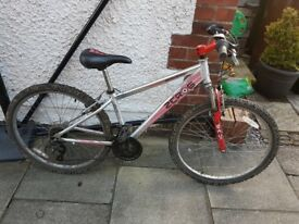 Childs or Small Adults Raleigh Zero6 Mountain Bike 14'' frame 26'' wheel