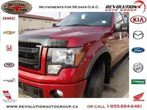 2014 Ford F-150 FX4 ECO BOOST FX4