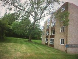 2 bedroom flat in Shortlands Grove, Bromley, BR2 (2 bed) (#1174048)