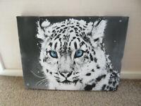 Snow Blue Eye Leopard Canvas