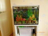 60 Litre Aquarium For sale