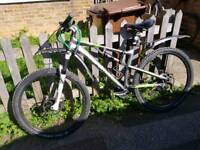 Montain bike offers
