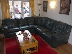 Natuzzi Italian Real Leather corner Sofa - Green Colour