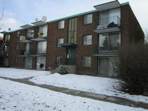 Sunalta - 1 Bedroom Apartment - ***April Rent Free***